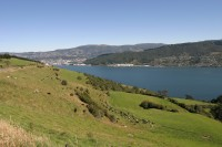 Highlight for Album: Larnach Castle and Otago Peninsula