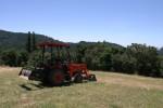 Every backyard needs a tractor