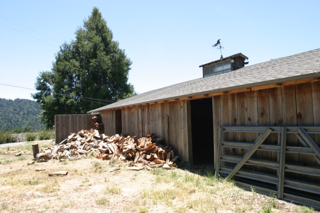 Horse barn and firewood