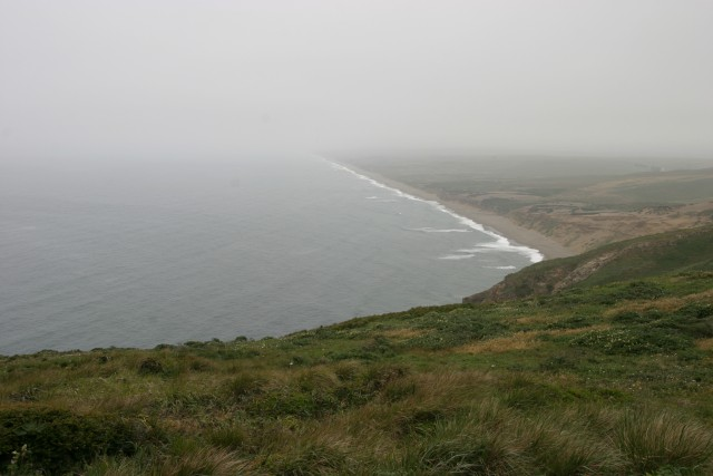 Foggy coastline