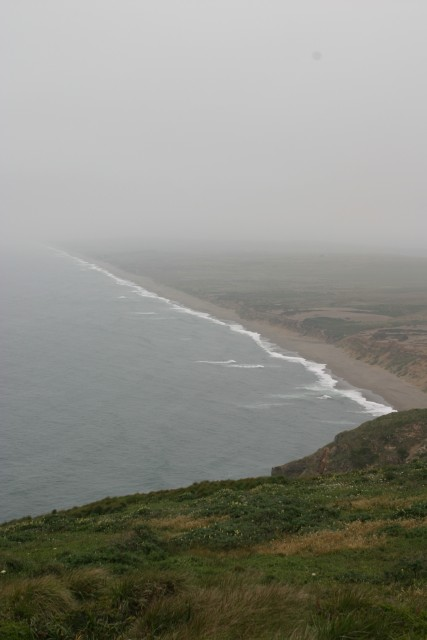 Foggy coastline, vertical